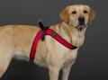 中型犬・大型犬用ハーネス《 Sporza 》 - サイズ [3] - Tre Ponti