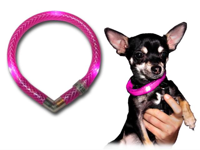 犬の交通安全ライト、光る首輪|LEDドッグカラー LEUCHTIE mini(小型犬用セーフティーライト)|犬グッズ通販HAU