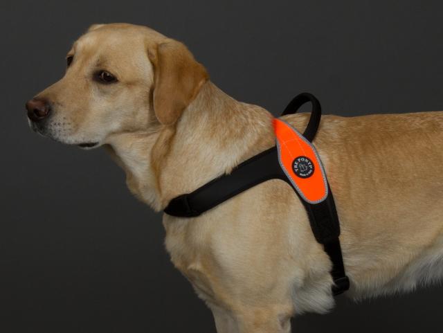中型犬・大型犬用ハーネス Primo Tre Ponti トレ・ポンティ|着脱簡単で脇が擦れにくいイタリア製ハーネス|犬グッズ通販HAU