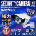防犯カメラ sdカード録画 屋外 監視カメラ  (OL-129)