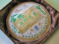 【生茶】金典布朗之春(2008年)