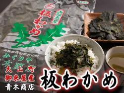 干物(単品)連子鯛 山陰沖日本海産(鳥取県・島根県産)
