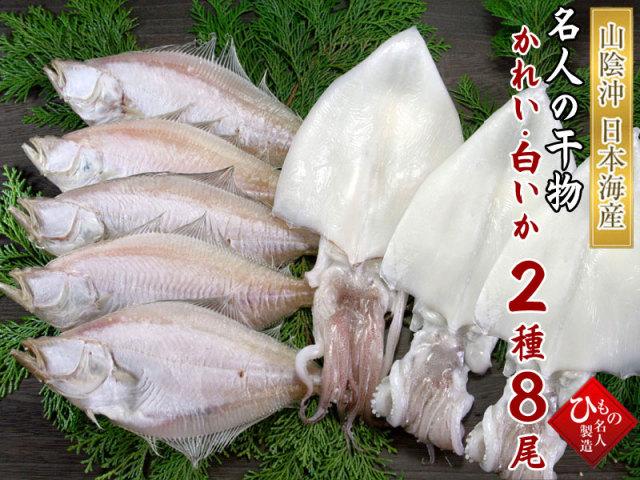 干物(ひもの)詰合 白いか・えてかれい 2種詰合-8尾【送料無料】※東北・北海道・沖縄は送料520円をお願いします。