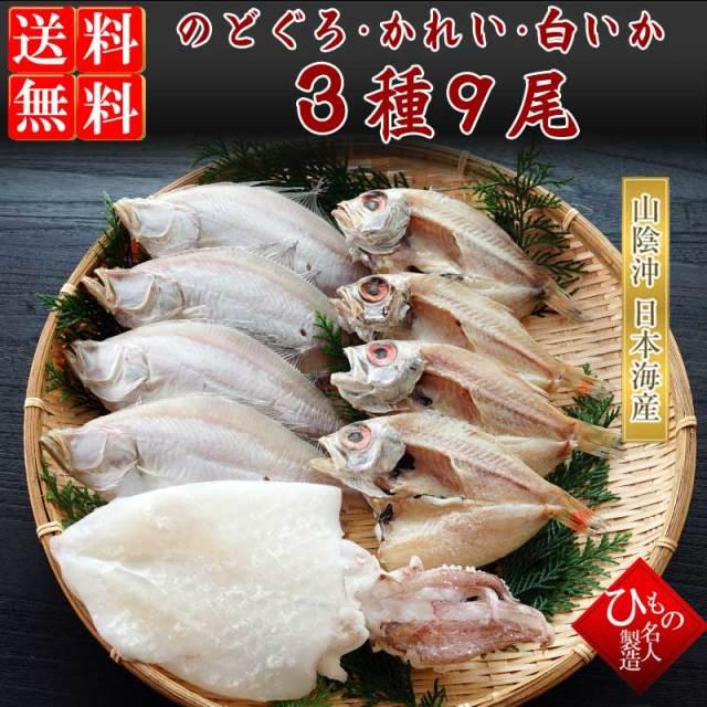 干物(ひもの)詰合 のどぐろ・えてかれい・白いか3種詰合-9尾