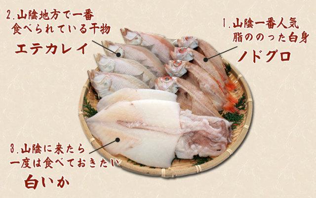 干物(ひもの)詰合 のどぐろ・えてかれい・白いか3種詰合-10尾_内容