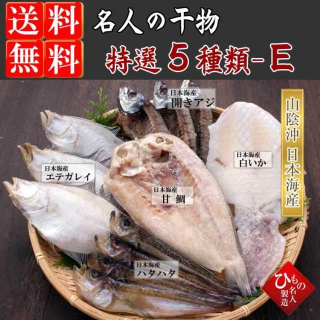 干物(ひもの)詰合  5種(白いか入り)詰合-E 【送料無料】 ※北海道・沖縄・東北は送料520円をお願いします。