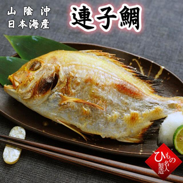 連子鯛 メイン640px