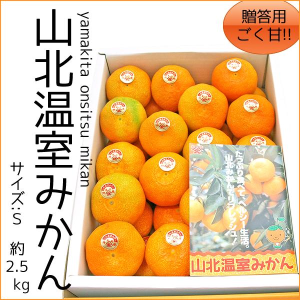 高知県山北産 温室(ハウス)山北みかん 2.5kg・サイズS 【贈答・ギフト用】