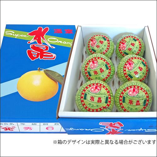 高知県産 水晶文旦 (3kg・6玉)