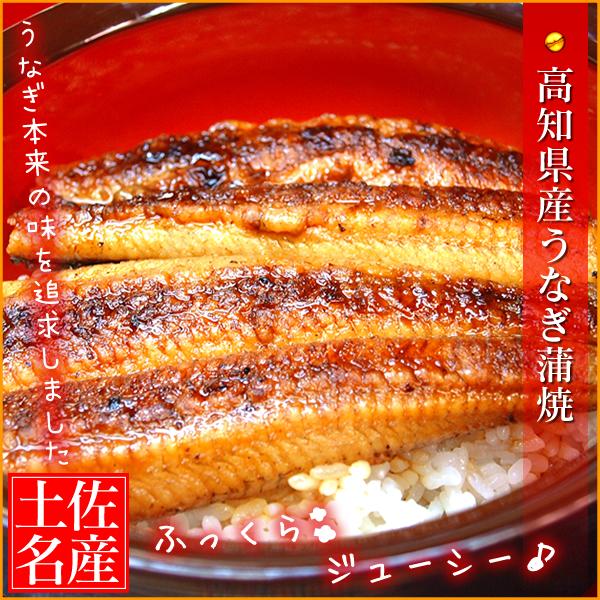 【送料無料】高知県産 うなぎ蒲焼き 2尾セット(約160g×2) ※但し、北海道・沖縄へのお届けの場合は、別途送料が必要※