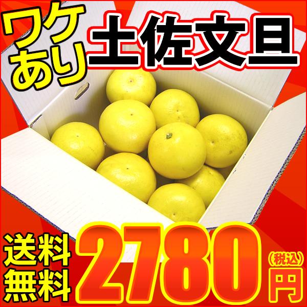 高知県産 訳あり土佐文旦 約10kg・サイズおまかせ(ワケあり)