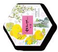 名菓ひよ子 角7個入(春箱)