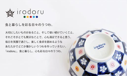 【和食器通販ショップ 藍土な休日】有田焼 皓洋窯 irodoru イロドル つたうプロジェクト