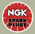 NGK Plug デカール