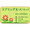 スプリングK(大)セット|レメディ.com ホメオパシージャパン正規販売店