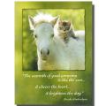 グリーティングカード「Good Company」白い仔馬と子猫