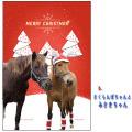 【メール便送料込】ホーストラスト クリスマスカード B