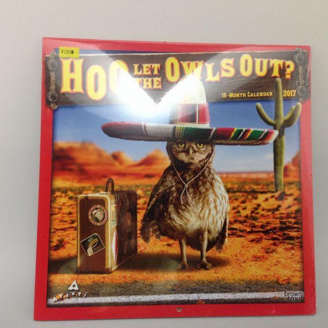2017年 フクロウカレンダー HOO LET THE OWLS OUT