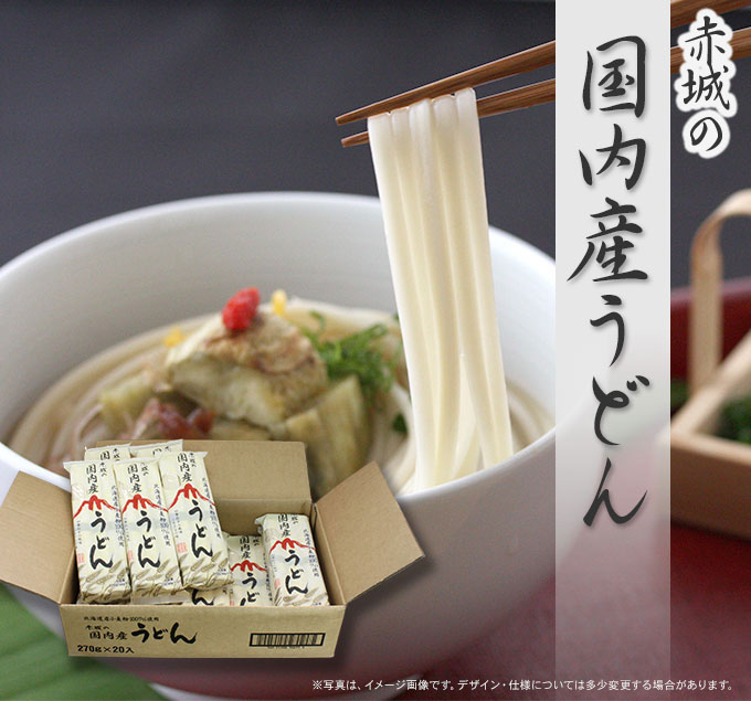 【送料込】赤城の国内産うどん270g×20袋(1ケース)(北海道産小麦粉100%使用)ゆで時間約10分 池利