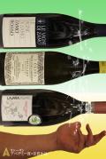 """A0153 イタリアワイン素描""""あべのままで"""" 「春風味」"""