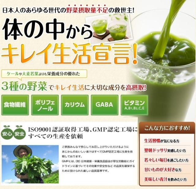 おいしい青汁(焙煎ごぼう入り)