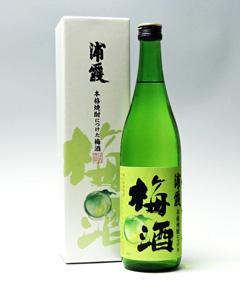 浦霞「本格焼酎につけた梅酒」720ml