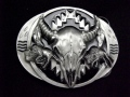 ネイティブ  SKM8D Buffalo Skull/Bisons