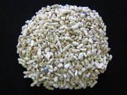 サンゴ砂#10 (1〜2cm程度)【1kg】 ヤドカリ・水槽・インテリアに