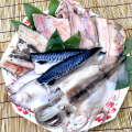 お魚低温熟成一夜干し7点セット