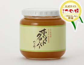 【世界の蜂蜜】カナダ産ホワイトクローバー蜂蜜600g