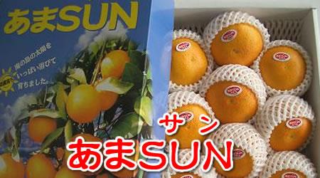 沖縄産 あまSUN(あまさん)