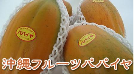 沖縄産 フルーツパパイヤ