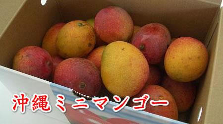 沖縄産 ミニマンゴー(2kg入れ)(14個~25個)