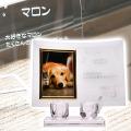メモリアルクリスタル L版用 仏器・茶湯器セット