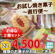 お試し焼き菓子工場直行便22個入x2箱セット