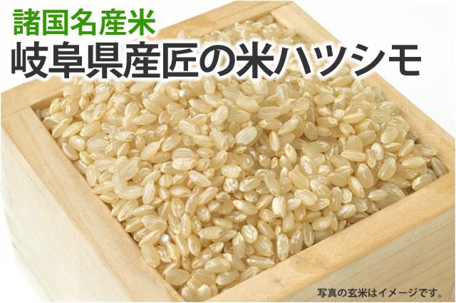 匠の米岐阜ハツシモ