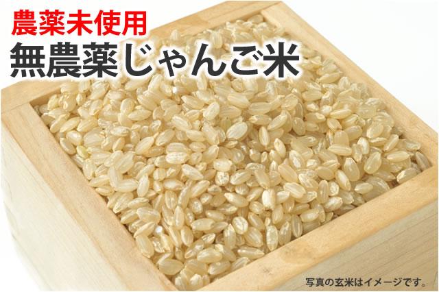 無農薬じゃんご米