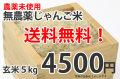 【送料無料】神代じゃんご米(無農薬米)【玄米】5kg
