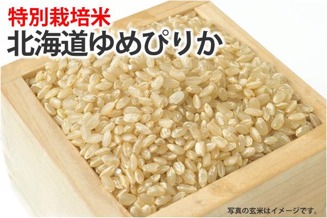 特別栽培米北海道ゆめぴりか