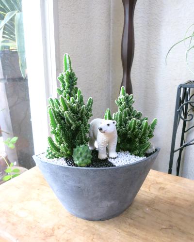 0130観葉植物ギフトアニマルガーデン ゆったり白熊くん