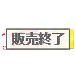 すぐるスーパービッグカツ【現物】