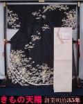 新品仕立上品 夏物 絽の訪問着と袋帯、帯揚げ、帯〆の4点セット 熨斗に百花模様 裄長サイズ トールサイズ