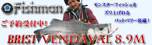 Fishman��BRIST VENDAVAL 8.9M�ʥ֥ꥹ�� �٥���С��� 8.9M��
