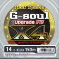 ��Ĥ��ߡ�G-soul Upgreade PE X4