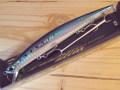 DUO Tide Minnow Slim 140(デュオ タイドミノースリム140)