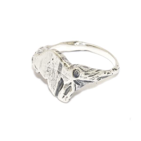 DELPHI(デルフィー)iwa  ring  S dr8