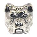 CRAZY PIG DESIGNS(���쥤�����ԥå�)BOXER DOG RING �ܥ������ɥå����#1045