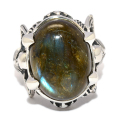 CRAZY PIG DESIGNS(���쥤�����ԥå�) Twin Skeleton Ring/ Dark labradrite #1054 �ĥ��󥹥���ȥ󡡥�������֥�ɥ饤��