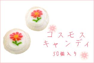 お徳用コスモスキャンディ 50個入り。
