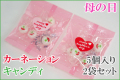 【母の日】【2袋セット】カーネーション・キャンディ 5個入り×2袋セット